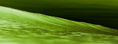 Láser Verde y Tulio
